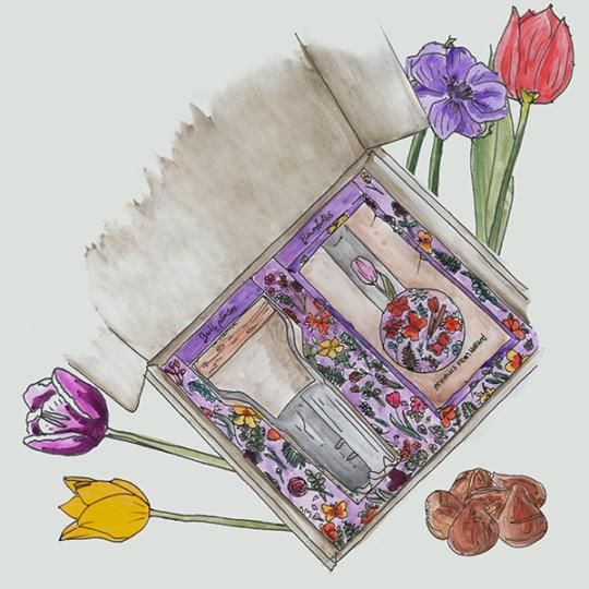 kraftdoos met bloembollen en bollenplanter