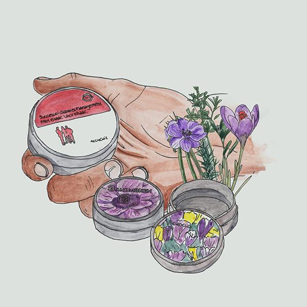 Runde Dose mit Blumenzwiebeln