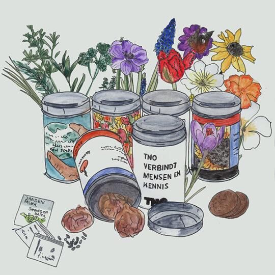 runde Dosen mit Blumenzwiebeln oder Samen
