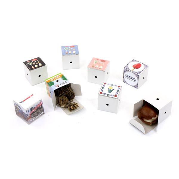 mini blumenzwiebel Box-4597
