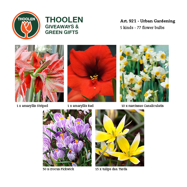 921-urban-bloembollenpakket