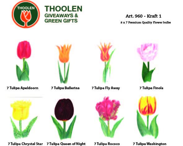 kraft1-bloembollenpakket